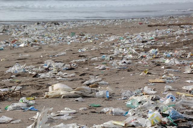 Plastic Poisoning Sydney's beaches