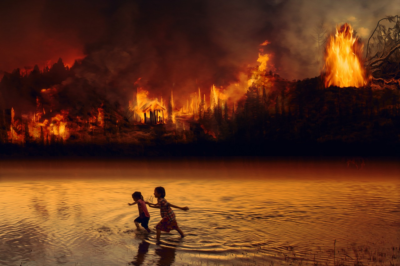 Fire in the Amazon, Why is this a big deal?